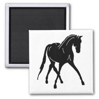Sidepass Dressage Horse Magnet