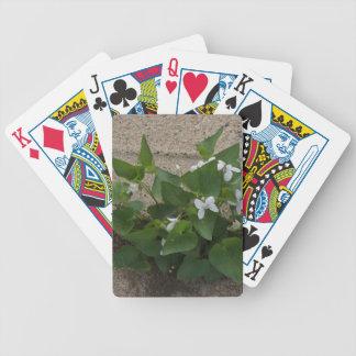 Sidewalk Flower Bicycle Playing Cards