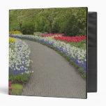 Sidewalk pathway through tulips and daffodils, 2 binder