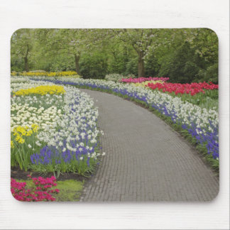 Sidewalk pathway through tulips and daffodils, 2 mouse pad