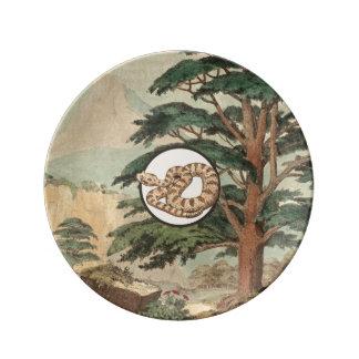 Sidewinder en el ejemplo del hábitat natural plato de cerámica