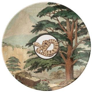 Sidewinder en el ejemplo del hábitat natural platos de cerámica