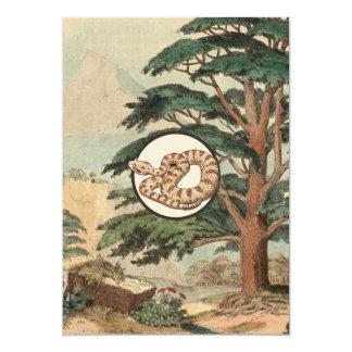 Sidewinder In Natural Habitat Illustration Card
