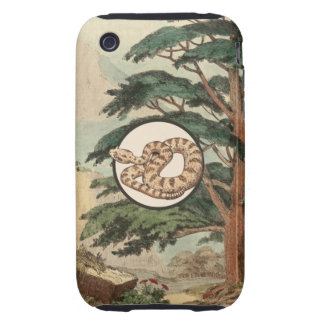 Sidewinder In Natural Habitat Illustration Tough iPhone 3 Covers