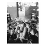 Siem Reap Camboya, flores de Lotus Tarjeta Postal