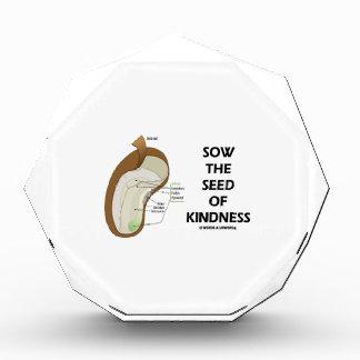 Siembre la semilla de la amabilidad (el humor de