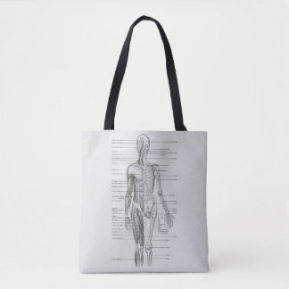 Siempre aprendiendo: Carta de la anatomía del Bolsa De Tela