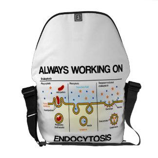 Siempre trabajando en Endocytosis consumición cel Bolsa De Mensajería