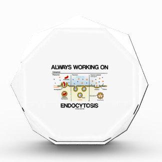 Siempre trabajando en Endocytosis consumición cel