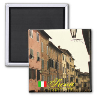 Siena italy cool magnet design