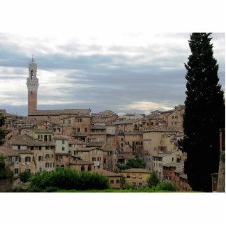 Siena, Italy, tower of City Hall at left Statuette