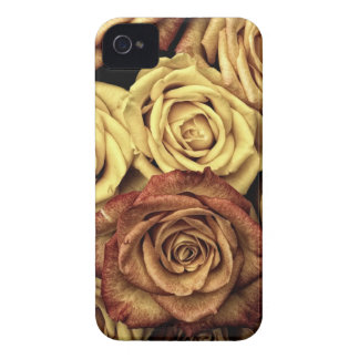 SIENA ROSES iPhone 4 COVER