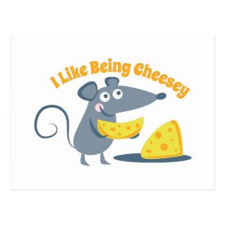 Siendo Cheesey Tarjetas Postales