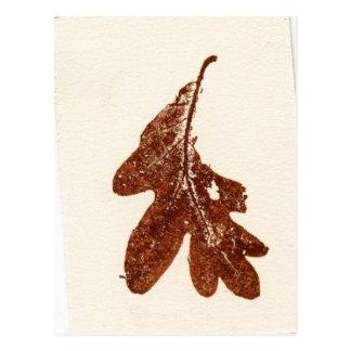 """Sienna Oak Leaf"" Country Roads Postcard"