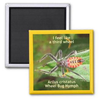 Sienta como un tercer insecto de rueda imán cuadrado
