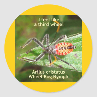 Sienta como un tercer insecto de rueda pegatina redonda