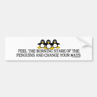 Sienta la mirada fija ardiente de los pingüinos Bu Etiqueta De Parachoque