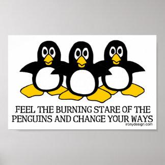 Sienta la mirada fija ardiente de los pingüinos póster