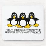 Sienta la mirada fija ardiente de los pingüinos tapetes de ratones