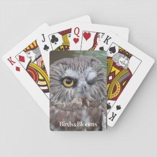 Sierra-amole el búho cartas de juego