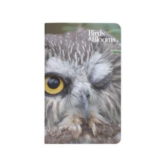 Sierra-amole el búho cuaderno grapado