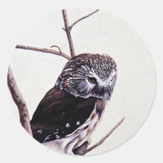 Sierra-amole el búho pegatina redonda