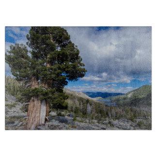 Sierra Juniper and Evergreen Trees 2 Cutting Boards