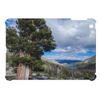 Sierra Juniper and Evergreen Trees 2 iPad Mini Case