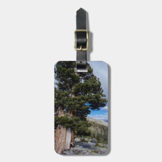 Sierra Juniper and Evergreen Trees 2 Luggage Tags