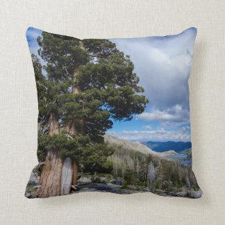 Sierra Juniper and Evergreen Trees 2 Pillow