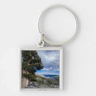 Sierra Juniper and Evergreen Trees 2 Silver-Colored Square Keychain