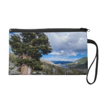 Sierra Juniper and Evergreen Trees 2 Wristlet