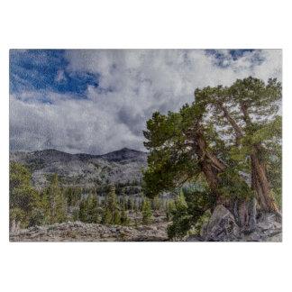 Sierra Juniper and Evergreen Trees Cutting Boards