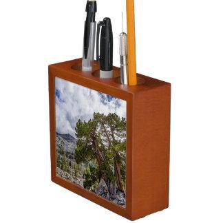 Sierra Juniper and Evergreen Trees Desk Organizer