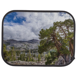 Sierra Juniper and Evergreen Trees Floor Mat