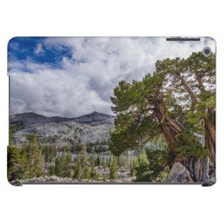 Sierra Juniper and Evergreen Trees iPad Air Cases