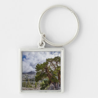 Sierra Juniper and Evergreen Trees Silver-Colored Square Keychain