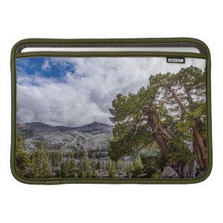 Sierra Juniper and Evergreen Trees Sleeve For MacBook Air
