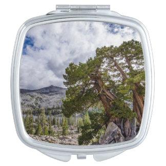 Sierra Juniper and Evergreen Trees Vanity Mirrors
