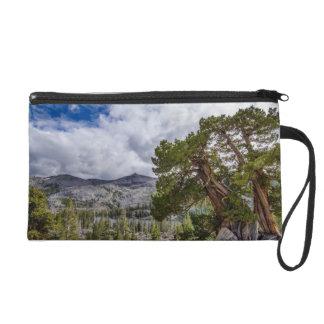 Sierra Juniper and Evergreen Trees Wristlets