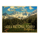 Sierra National Forest California Post Cards