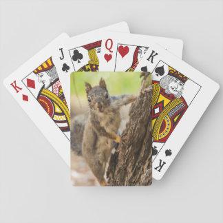 Sierra Nevada del este Cartas De Póquer