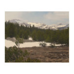 Sierra Nevada Mountains and Snow at Yosemite Wood Wall Art