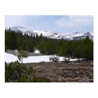 Sierra Nevada Mountains and Snow Postcard