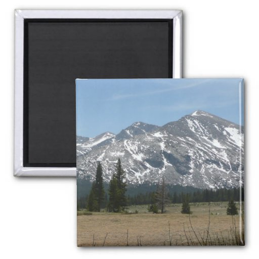 Sierra Nevada Mountains I Magnet
