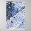Sierra Snow, Highway 88 print