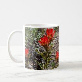 Sierra Wildflower Mugs - Paintbrush