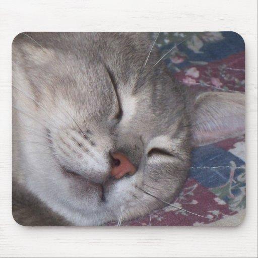 Siesta del gato alfombrilla de ratones
