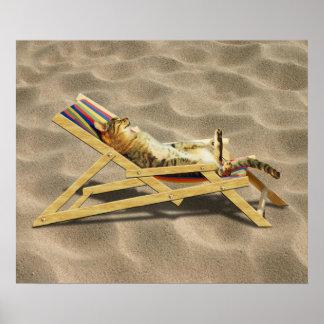 Siesta del gato del verano en silla de playa con póster