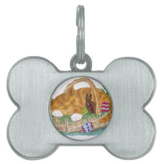 Siesta del gato en una cesta de Pascua Placa De Mascota